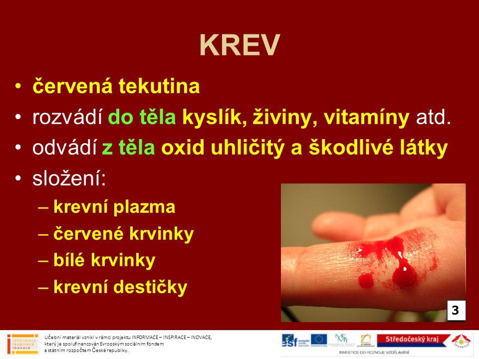 KREV červená tekutina rozvádí do těla kyslík, živiny, vitamíny atd. odvádí z těla oxid uhličitý a škodlivé látky složení: –krevní plazma –červené krvi