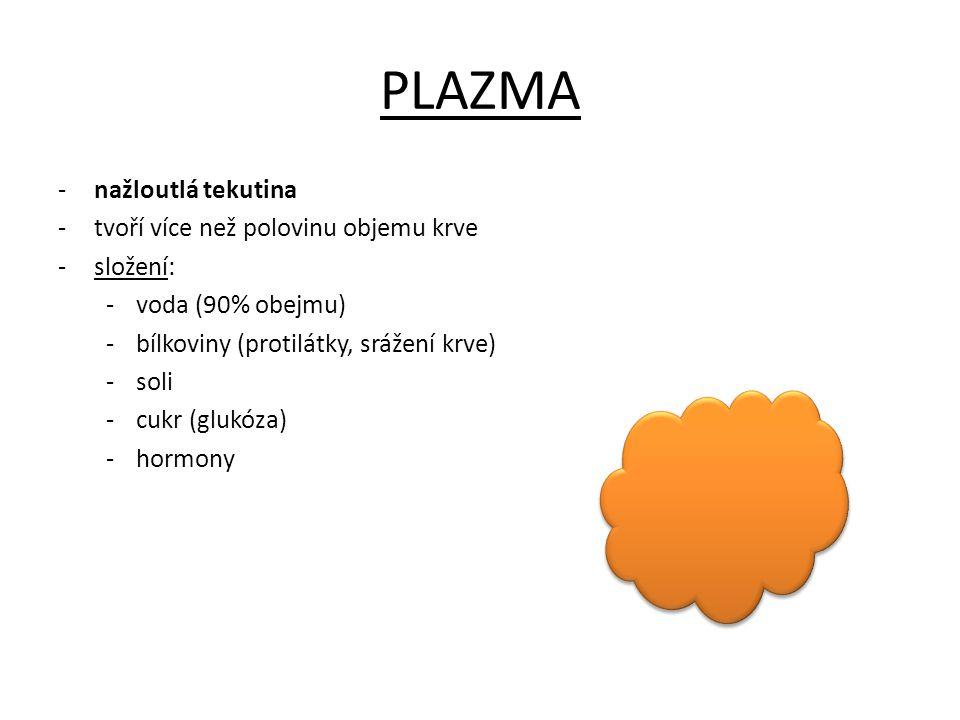 PLAZMA -nažloutlá tekutina -tvoří více než polovinu objemu krve -složení: -voda (90% obejmu) -bílkoviny (protilátky, srážení krve) -soli -cukr (glukóz