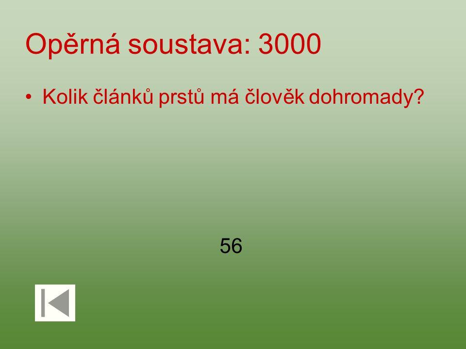 Opěrná soustava: 3000 Kolik článků prstů má člověk dohromady? 56