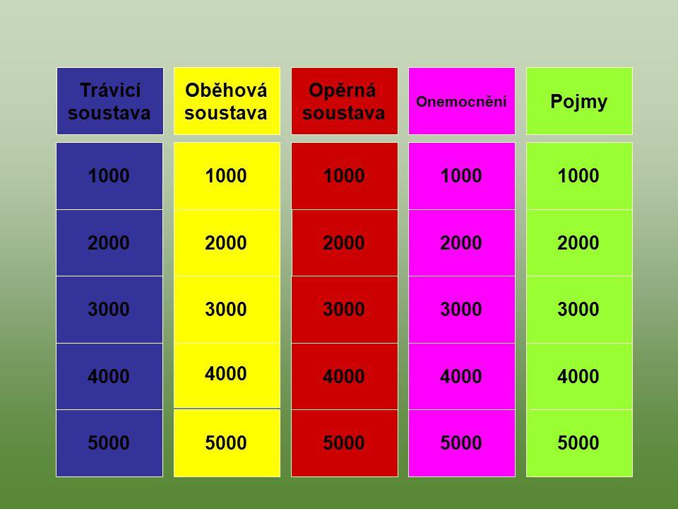 Pojmy Oběhová soustava Trávicí soustava Opěrná soustava Onemocnění 1000 4000 3000 2000 5000 1000 4000 3000 2000 5000 1000 5000 3000 4000 2000 1000 200