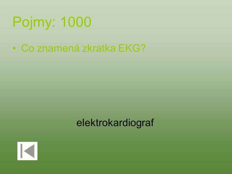 Pojmy: 1000 Co znamená zkratka EKG? elektrokardiograf