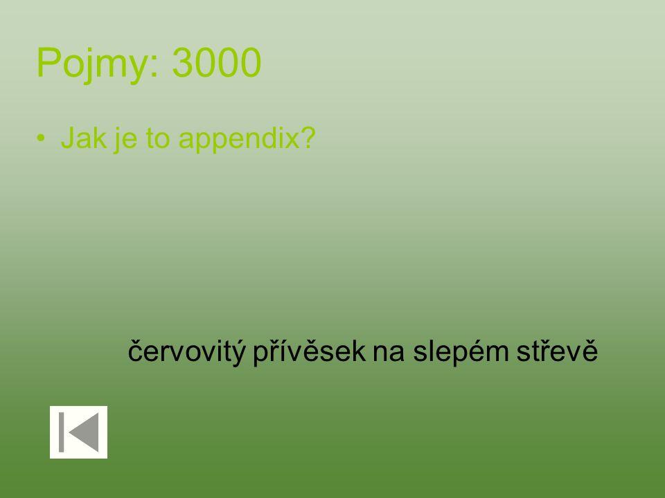 Pojmy: 3000 Jak je to appendix? červovitý přívěsek na slepém střevě