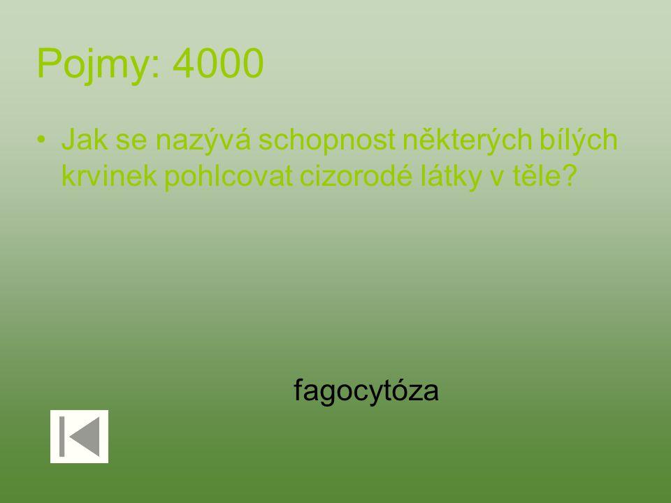 Pojmy: 4000 Jak se nazývá schopnost některých bílých krvinek pohlcovat cizorodé látky v těle? fagocytóza