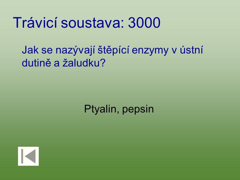 Trávicí soustava: 3000 Jak se nazývají štěpící enzymy v ústní dutině a žaludku? Ptyalin, pepsin