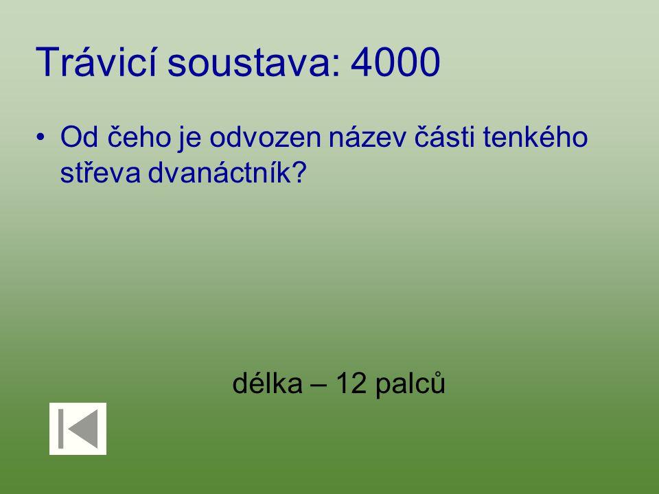 Trávicí soustava: 4000 Od čeho je odvozen název části tenkého střeva dvanáctník? délka – 12 palců