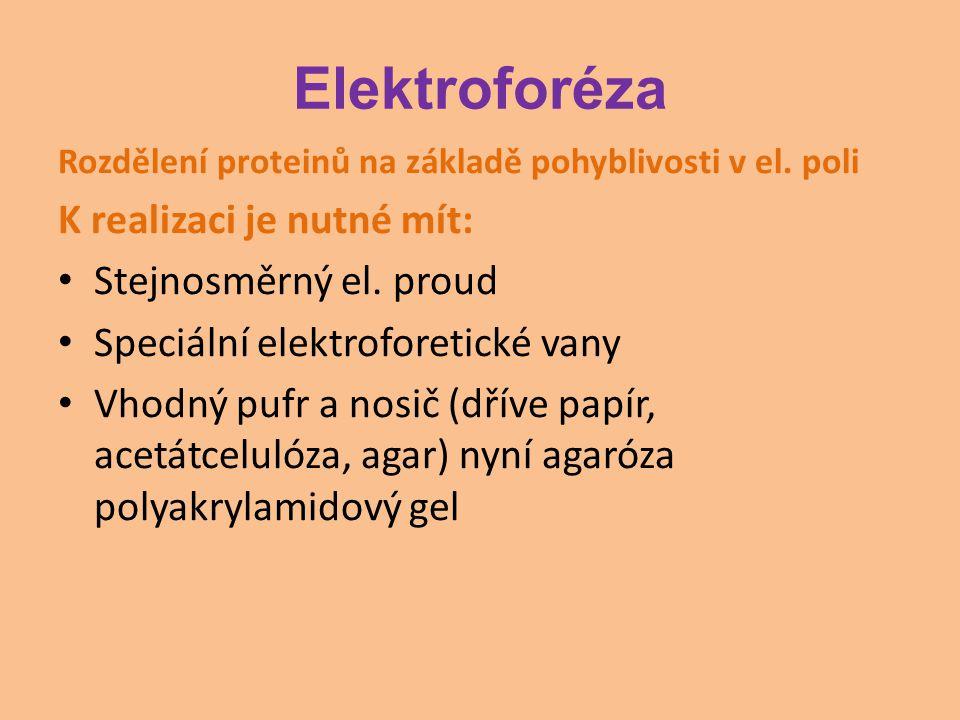 Elektroforéza Rozdělení proteinů na základě pohyblivosti v el. poli K realizaci je nutné mít: Stejnosměrný el. proud Speciální elektroforetické vany V