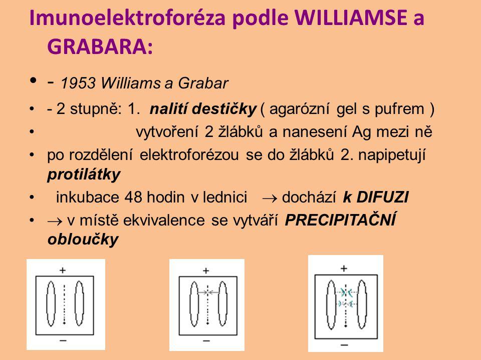 Imunoelektroforéza podle WILLIAMSE a GRABARA: - 1953 Williams a Grabar - 2 stupně: 1. nalití destičky ( agarózní gel s pufrem ) vytvoření 2 žlábků a n