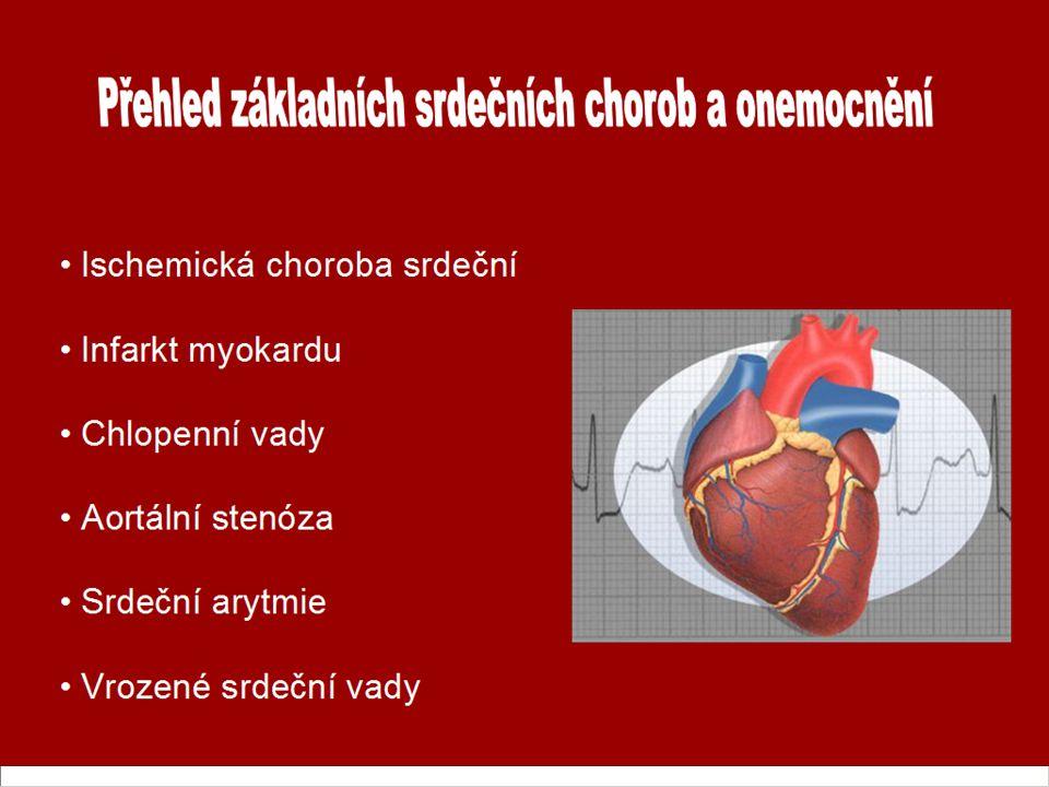 Ischemická choroba srdeční Infarkt myokardu Chlopenní vady Aortální stenóza Srdeční arytmie Vrozené srdeční vady