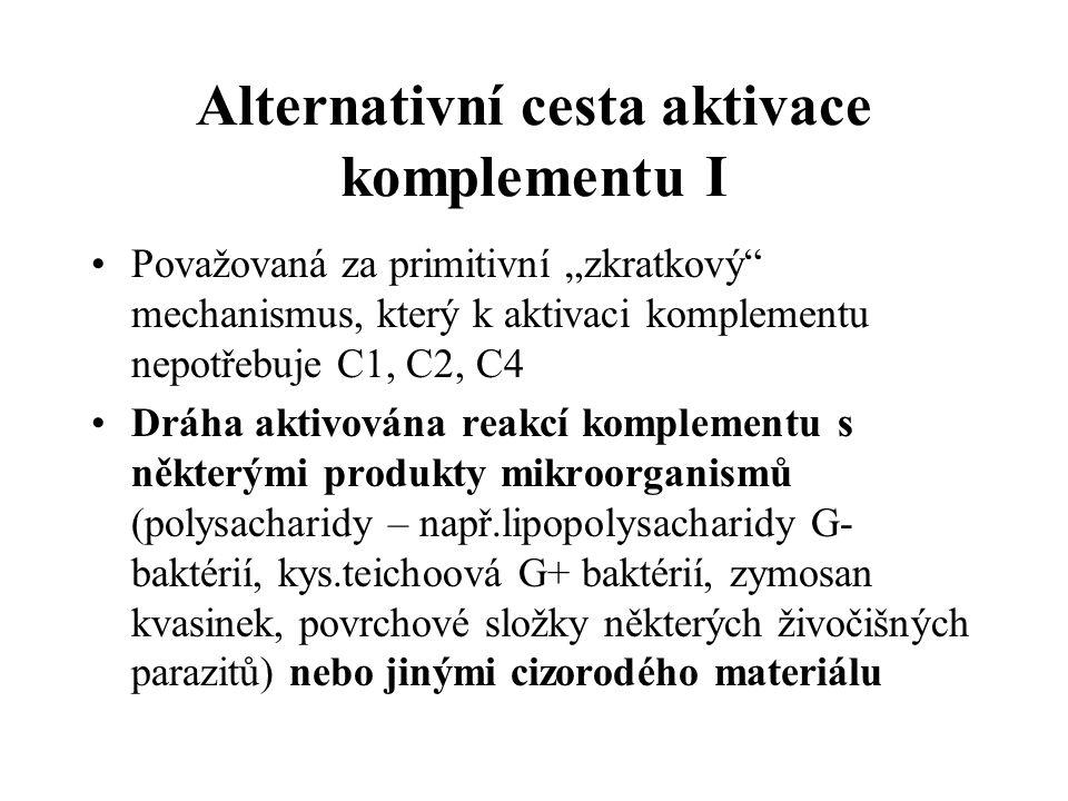 """Alternativní cesta aktivace komplementu I Považovaná za primitivní """"zkratkový mechanismus, který k aktivaci komplementu nepotřebuje C1, C2, C4 Dráha aktivována reakcí komplementu s některými produkty mikroorganismů (polysacharidy – např.lipopolysacharidy G- baktérií, kys.teichoová G+ baktérií, zymosan kvasinek, povrchové složky některých živočišných parazitů) nebo jinými cizorodého materiálu"""