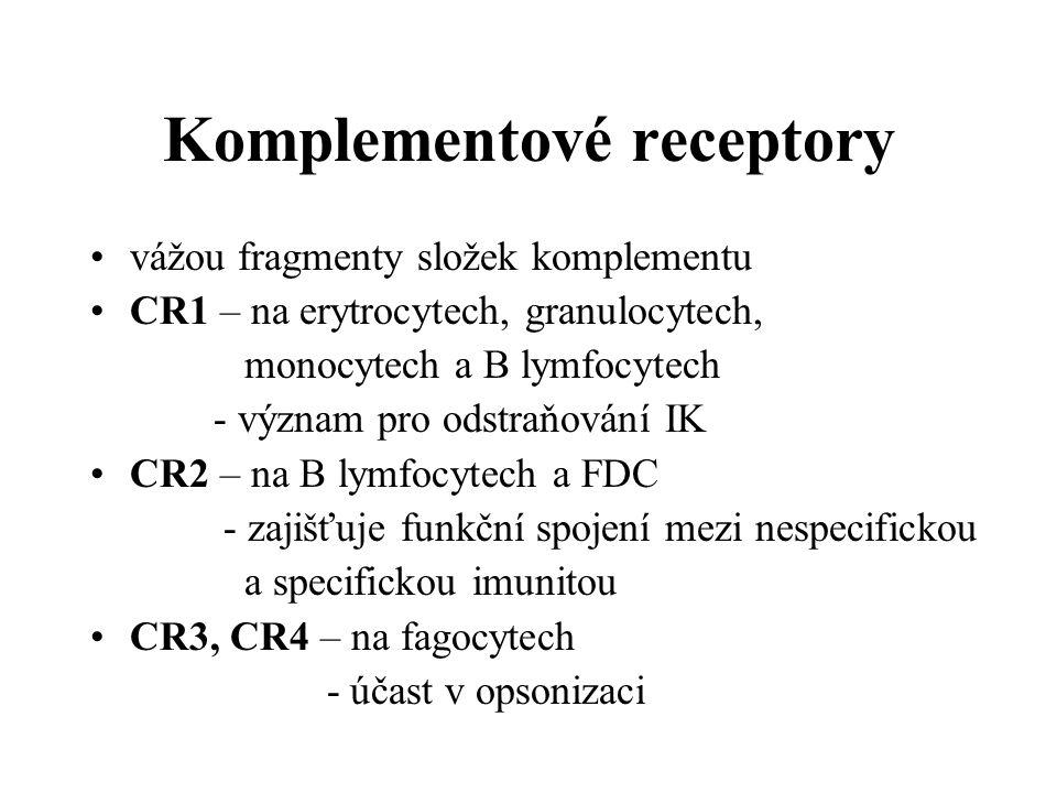Komplementové receptory vážou fragmenty složek komplementu CR1 – na erytrocytech, granulocytech, monocytech a B lymfocytech - význam pro odstraňování IK CR2 – na B lymfocytech a FDC - zajišťuje funkční spojení mezi nespecifickou a specifickou imunitou CR3, CR4 – na fagocytech - účast v opsonizaci