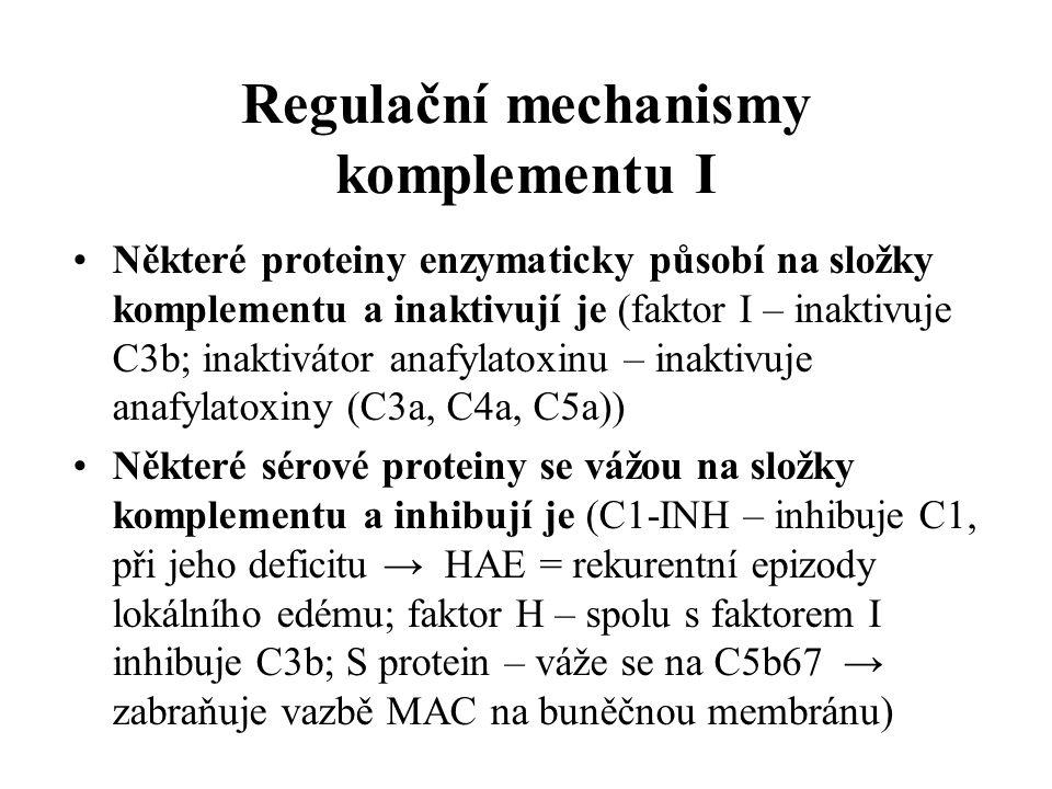 Regulační mechanismy komplementu I Některé proteiny enzymaticky působí na složky komplementu a inaktivují je (faktor I – inaktivuje C3b; inaktivátor anafylatoxinu – inaktivuje anafylatoxiny (C3a, C4a, C5a)) Některé sérové proteiny se vážou na složky komplementu a inhibují je (C1-INH – inhibuje C1, při jeho deficitu → HAE = rekurentní epizody lokálního edému; faktor H – spolu s faktorem I inhibuje C3b; S protein – váže se na C5b67 → zabraňuje vazbě MAC na buněčnou membránu)