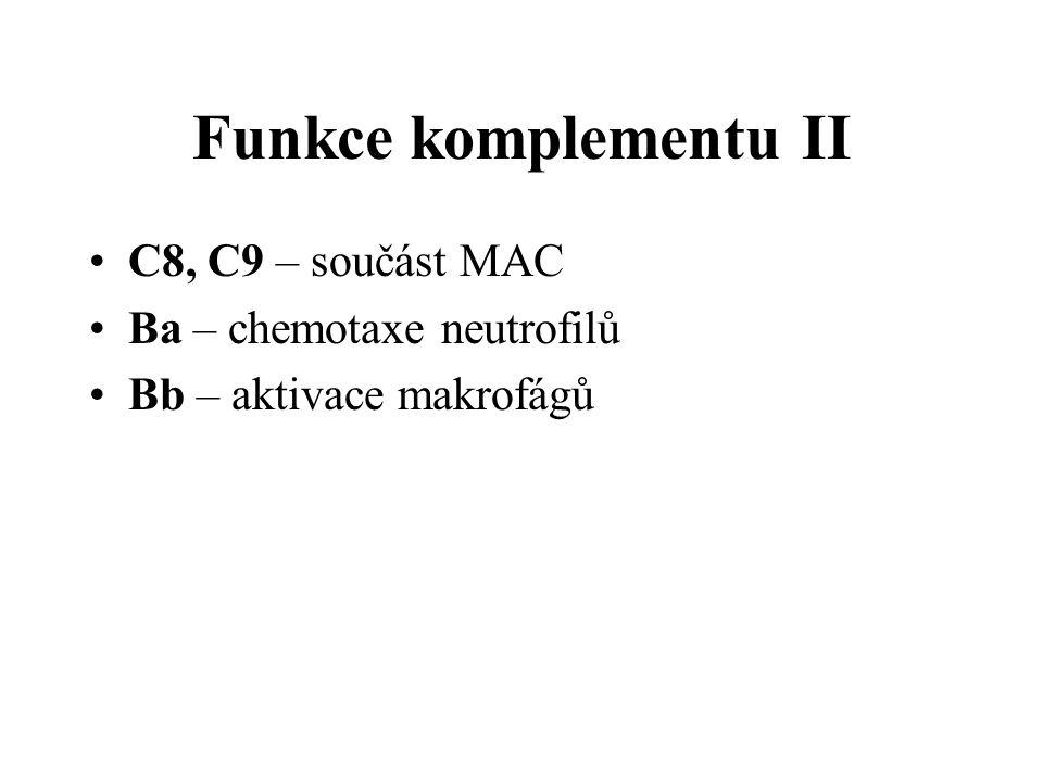 Funkce komplementu II C8, C9 – součást MAC Ba – chemotaxe neutrofilů Bb – aktivace makrofágů