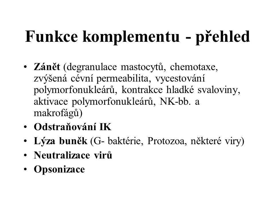 Funkce komplementu - přehled Zánět (degranulace mastocytů, chemotaxe, zvýšená cévní permeabilita, vycestování polymorfonukleárů, kontrakce hladké svaloviny, aktivace polymorfonukleárů, NK-bb.