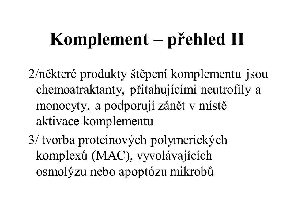 Komplement – přehled II 2/některé produkty štěpení komplementu jsou chemoatraktanty, přitahujícími neutrofily a monocyty, a podporují zánět v místě aktivace komplementu 3/ tvorba proteinových polymerických komplexů (MAC), vyvolávajících osmolýzu nebo apoptózu mikrobů