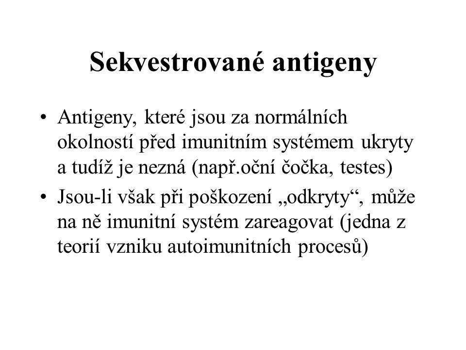 """Sekvestrované antigeny Antigeny, které jsou za normálních okolností před imunitním systémem ukryty a tudíž je nezná (např.oční čočka, testes) Jsou-li však při poškození """"odkryty , může na ně imunitní systém zareagovat (jedna z teorií vzniku autoimunitních procesů)"""