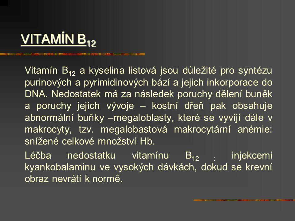 VITAMÍN B 12 VITAMÍN B 12 Vitamín B 12 a kyselina listová jsou důležité pro syntézu purinových a pyrimidinových bází a jejich inkorporace do DNA.