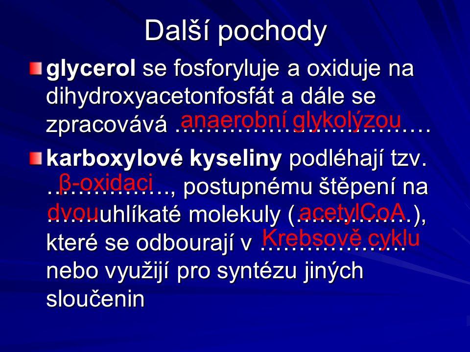 Další pochody glycerol se fosforyluje a oxiduje na dihydroxyacetonfosfát a dále se zpracovává …………………………… karboxylové kyseliny podléhají tzv. …………….,