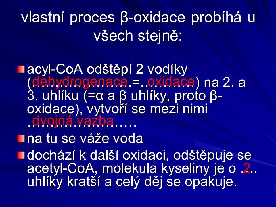 vlastní proces β-oxidace probíhá u všech stejně: acyl-CoA odštěpí 2 vodíky (………………….=…………) na 2. a 3. uhlíku (=α a β uhlíky, proto β- oxidace), vytvoř
