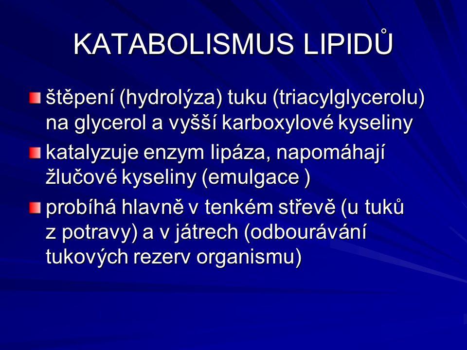 KATABOLISMUS LIPIDŮ štěpení (hydrolýza) tuku (triacylglycerolu) na glycerol a vyšší karboxylové kyseliny katalyzuje enzym lipáza, napomáhají žlučové k