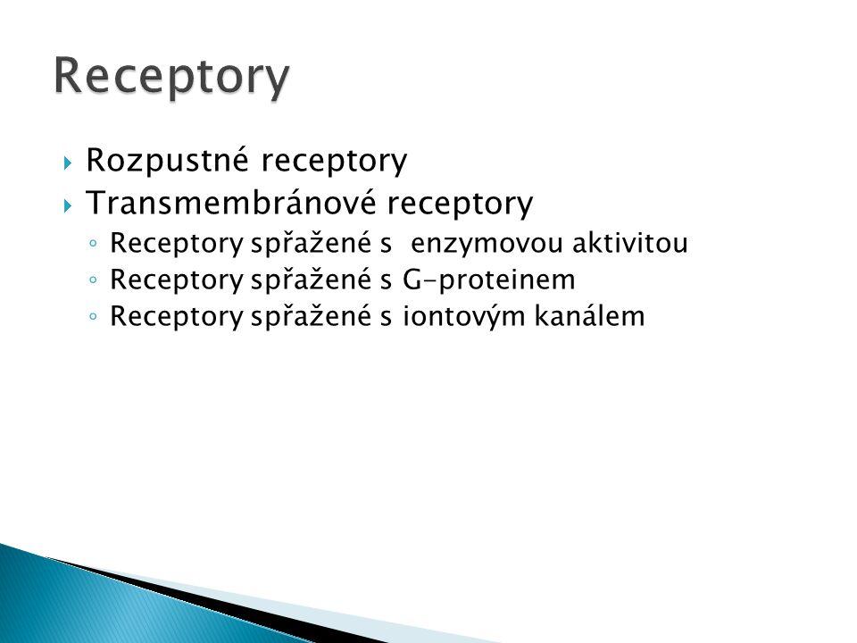  Rozpustné receptory  Transmembránové receptory ◦ Receptory spřažené s enzymovou aktivitou ◦ Receptory spřažené s G-proteinem ◦ Receptory spřažené s iontovým kanálem
