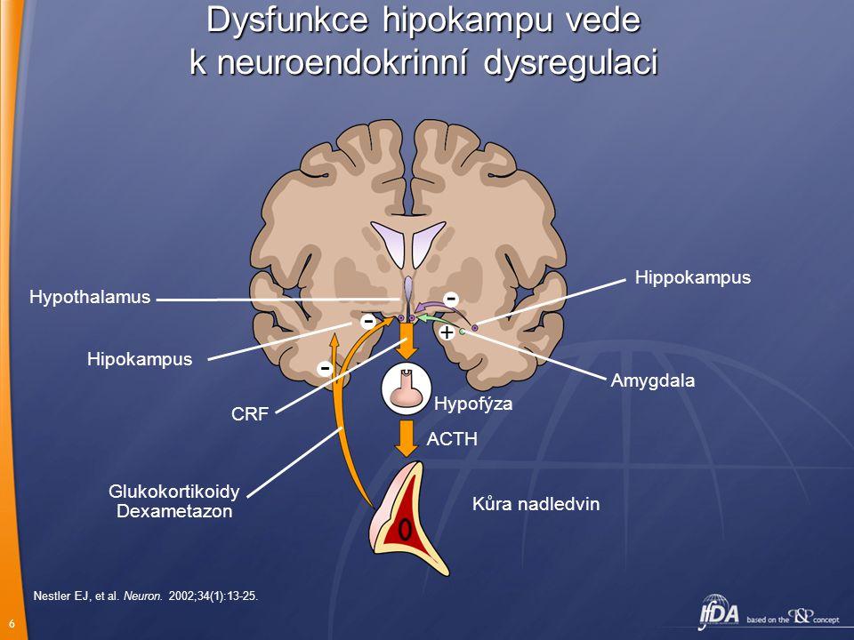 6 Nestler EJ, et al. Neuron. 2002;34(1):13-25. Hippokampus Amygdala Hipokampus Hypothalamus - + - - Kůra nadledvin ACTH Hypofýza CRF Glukokortikoidy D