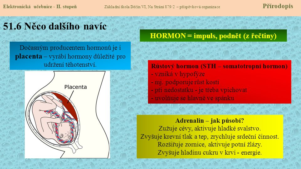 51.7 CLIL Elektronická učebnice - II.
