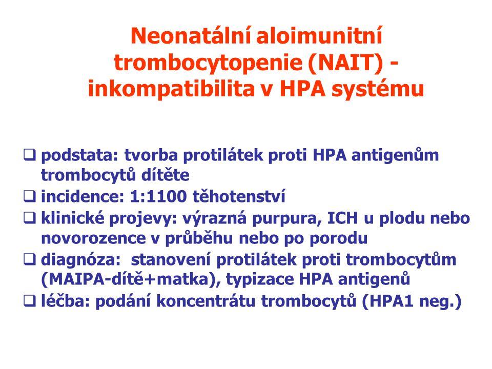 Neonatální aloimunitní trombocytopenie (NAIT) - inkompatibilita v HPA systému  podstata: tvorba protilátek proti HPA antigenům trombocytů dítěte  incidence: 1:1100 těhotenství  klinické projevy: výrazná purpura, ICH u plodu nebo novorozence v průběhu nebo po porodu  diagnóza: stanovení protilátek proti trombocytům (MAIPA-dítě+matka), typizace HPA antigenů  léčba: podání koncentrátu trombocytů (HPA1 neg.)