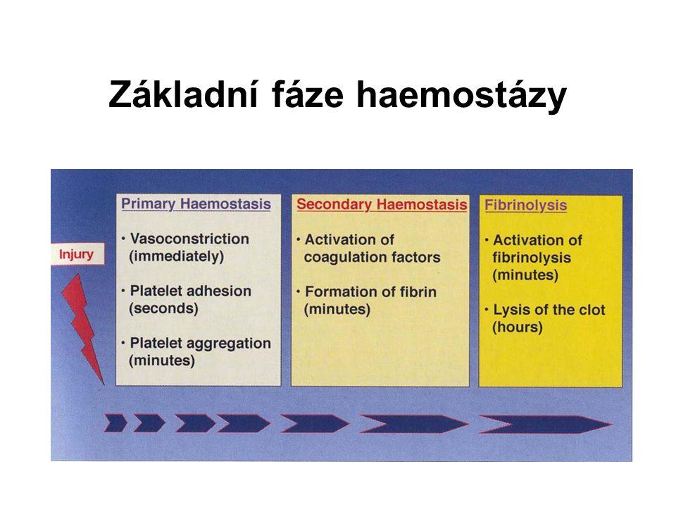 Základní fáze haemostázy