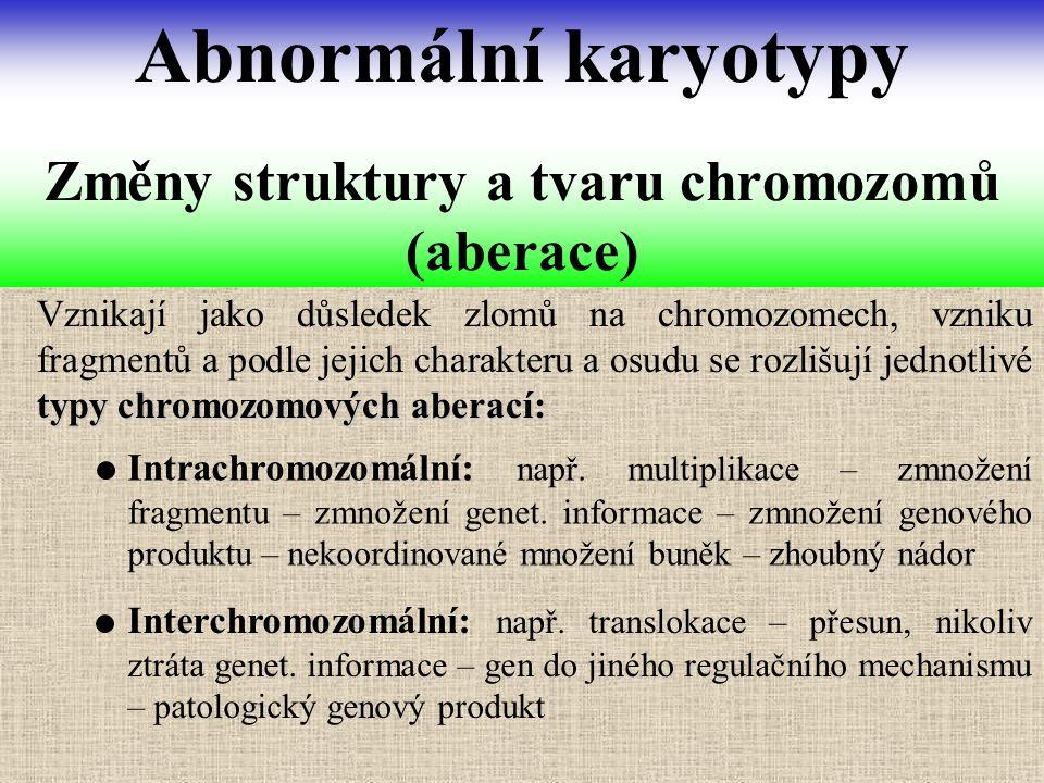 typy chromozomových aberací: Vznikají jako důsledek zlomů na chromozomech, vzniku fragmentů a podle jejich charakteru a osudu se rozlišují jednotlivé