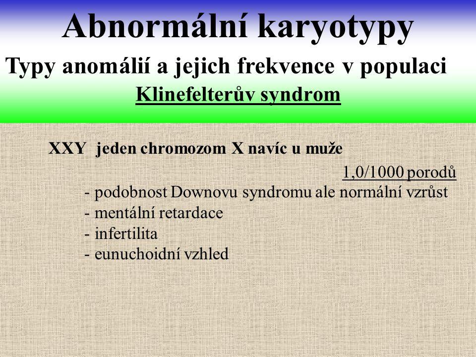 Klinefelterův syndrom Abnormální karyotypy Typy anomálií a jejich frekvence v populaci XXY jeden chromozom X navíc u muže - podobnost Downovu syndromu