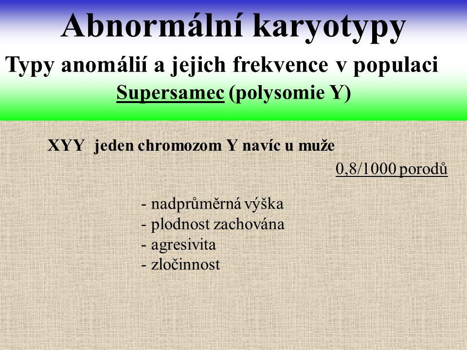 Supersamec (polysomie Y) Abnormální karyotypy Typy anomálií a jejich frekvence v populaci XYY jeden chromozom Y navíc u muže - nadprůměrná výška - plo