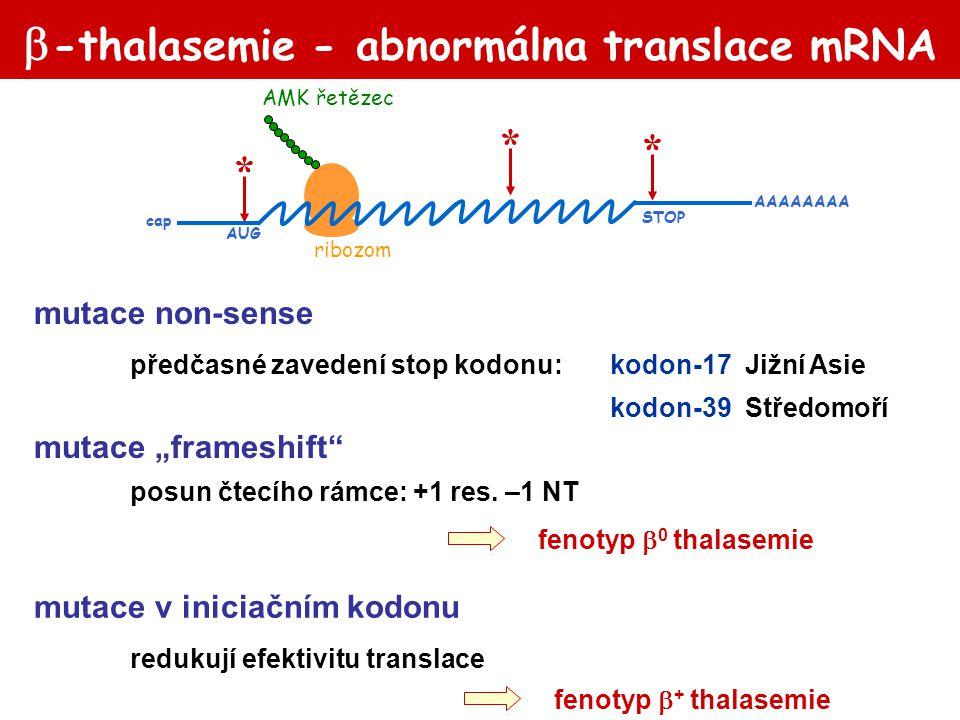  -thalasemie - abnormálna translace mRNA mutace non-sense předčasné zavedení stop kodonu:kodon-17 Jižní Asie kodon-39 Středomoří fenotyp  0 thalasem