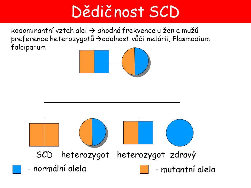 kodominantní vztah alel  shodná frekvence u žen a mužů preference heterozygotů  odolnost vůči malárii; Plasmodium falciparum - normální alela - muta