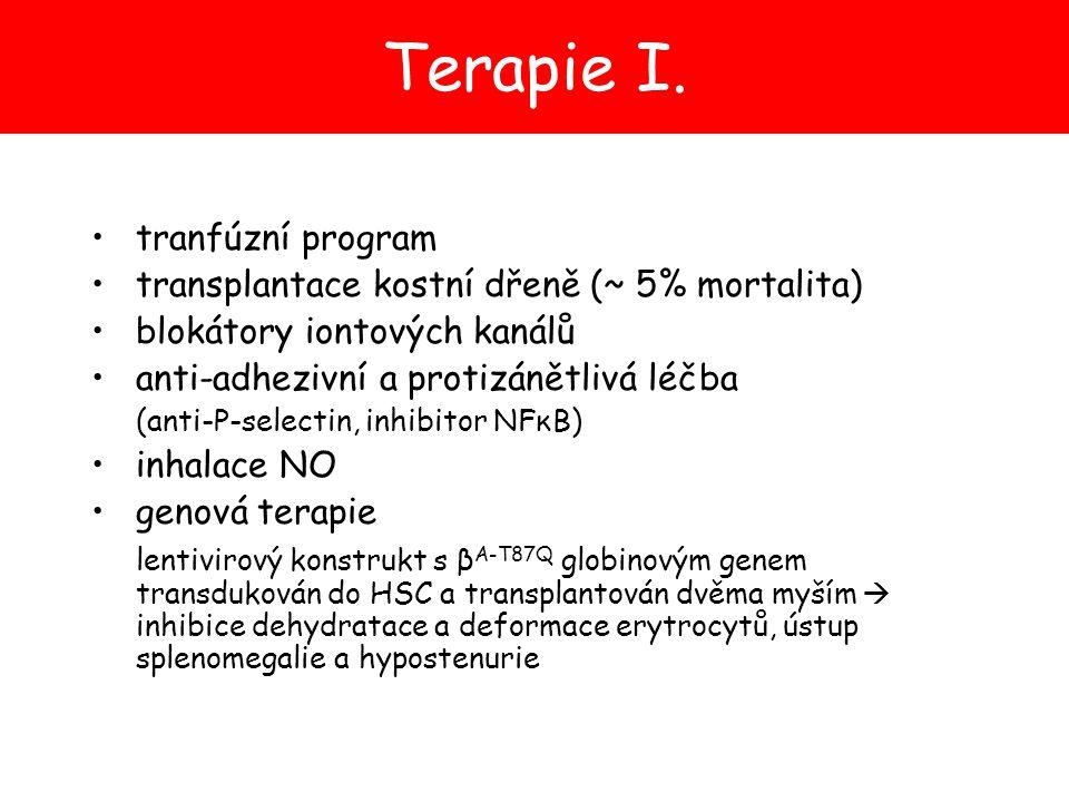 tranfúzní program transplantace kostní dřeně (~ 5% mortalita) blokátory iontových kanálů anti-adhezivní a protizánětlivá léčba (anti-P-selectin, inhib