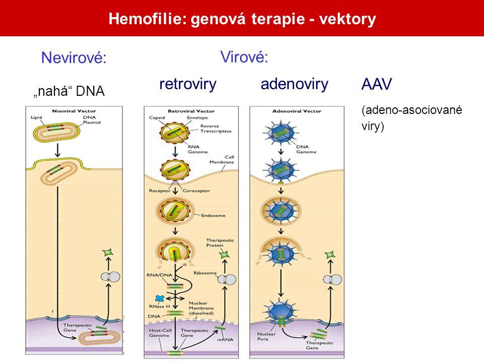"""Hemofilie: genová terapie - vektory Nevirové: """"nahá"""" DNA retroviry adenoviry Virové: AAV (adeno-asociované viry)"""