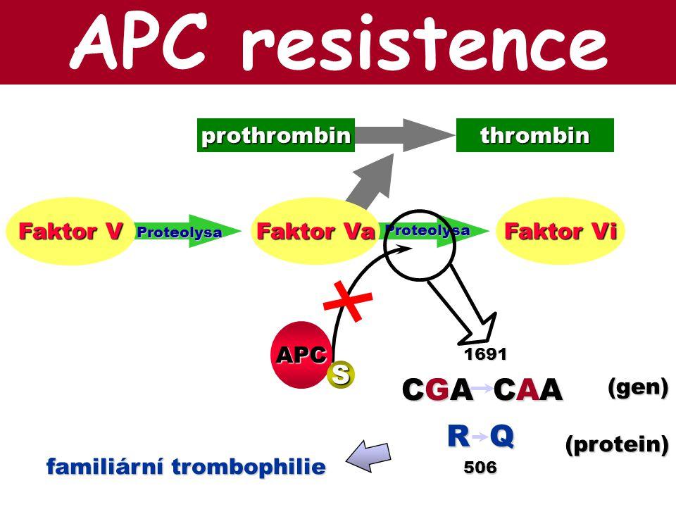 Faktor Va Faktor V Faktor Vi Proteolysa Proteolysa APC S thrombinprothrombin (gen) CGA CAA 1691 (protein) R Q 506 familiární trombophilie APC resisten