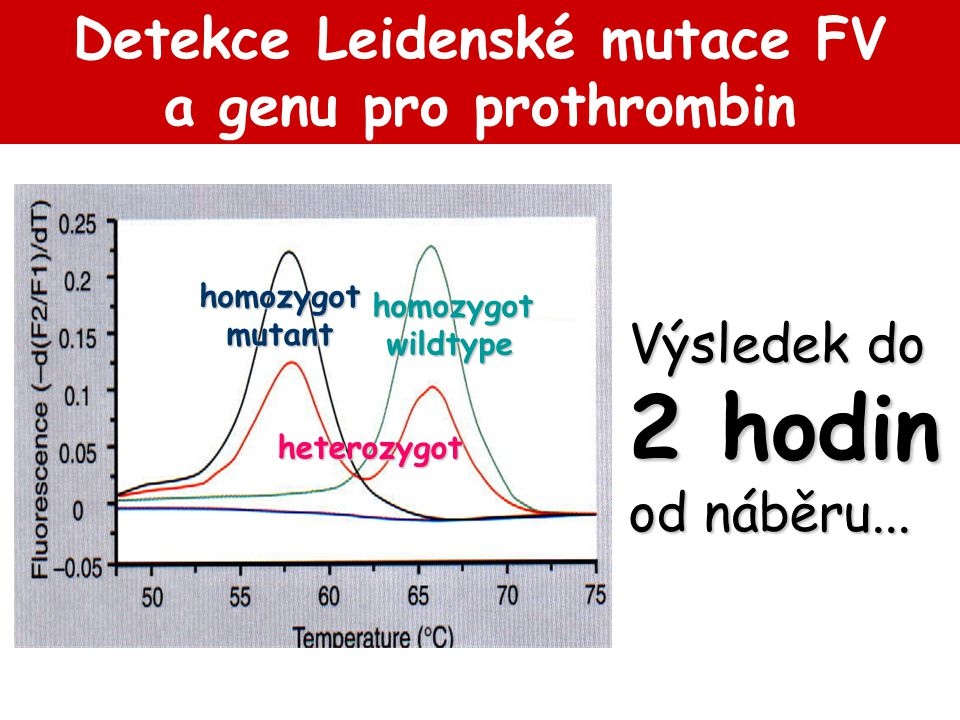 homozygot wildtype wildtype heterozygot homozygotmutant Detekce Leidenské mutace FV a genu pro prothrombin Výsledek do 2 hodin od náběru...
