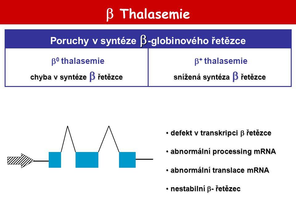  Thalasemie  Poruchy v syntéze  -globinového řetězce snížená syntéza  řetězce chyba v syntéze  řetězce  +  + thalasemie  0  0 thalasemie defe
