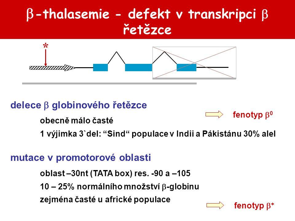  -thalasemie - abnormální processing mRNA GTAGGTAG * mutace na přechodu exon – intron: `5-GT ––– AG 3` porucha sestřihu mRNA fenotyp  0 thalasemie
