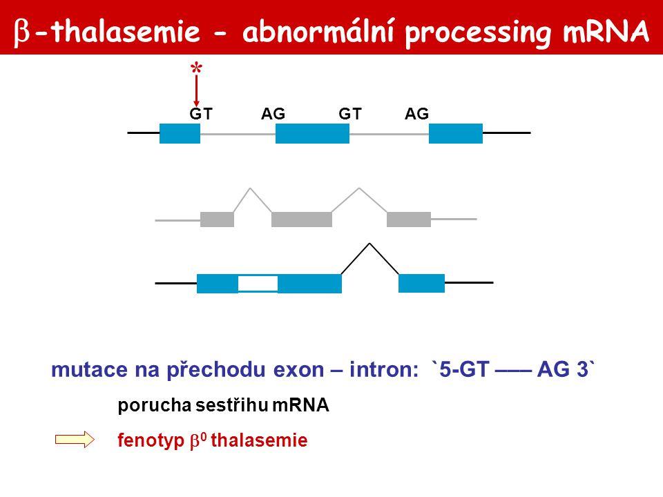 """ -thalasemie-abnormální processing mRNA 10% 90% GTAGGTAG TTGGTCT A mutace v """"splice site consensus sequence konsensní oblast okolo invariantních nukleotidů GT– AG odkrytí kryptických sestřihových míst fenotyp  + thalasemie"""