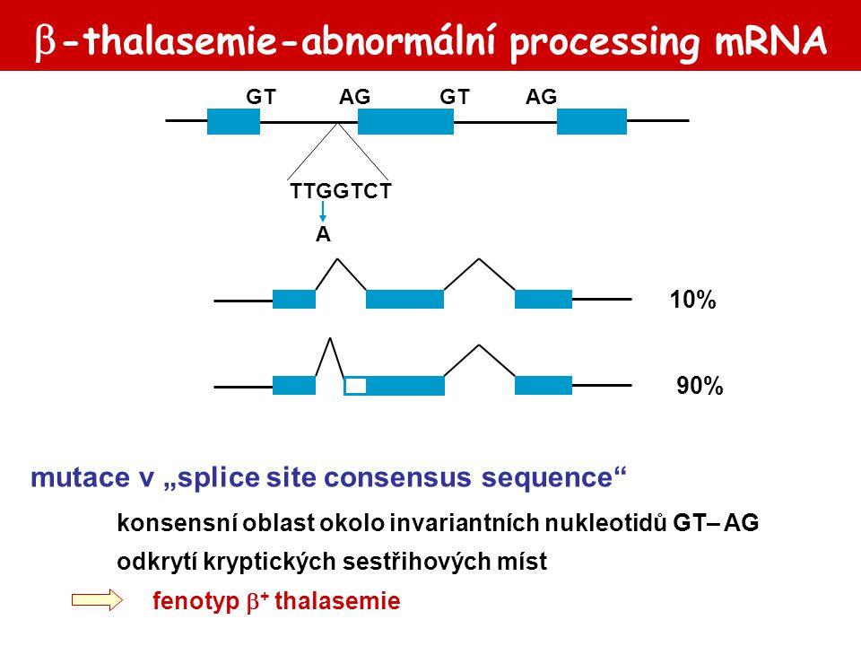 Hemofilie: léčba 2 rFVIIa NovoSeven® (Novo Nordisk) rhFVIIa u pacientů s inhibitorem: anti-FVIII Ab anti-FIX Ab při příhodách  krátký poločas (2,7h) FVIIa/TF FIIaFII FXa/FVaFX FIXa/FVIIIa FIX FXI TFPI