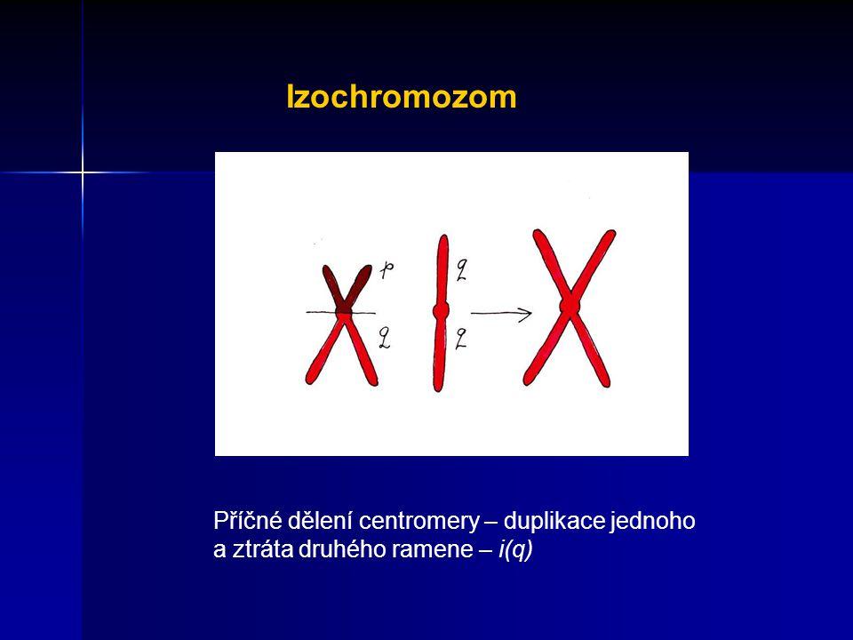 Izochromozom Příčné dělení centromery – duplikace jednoho a ztráta druhého ramene – i(q)