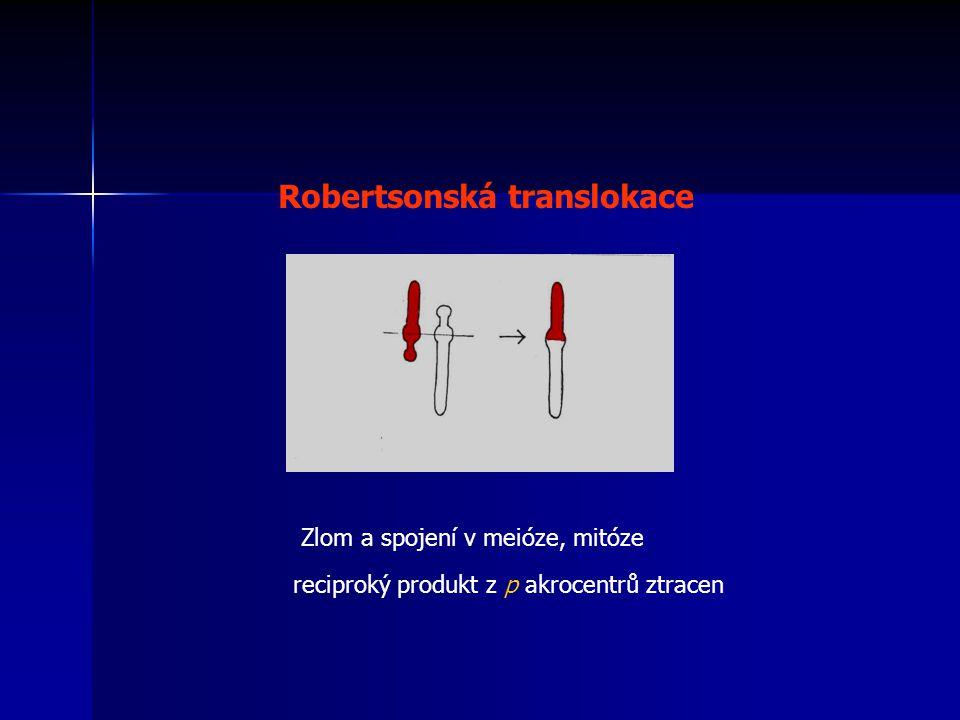 Robertsonská translokace Zlom a spojení v meióze, mitóze reciproký produkt z p akrocentrů ztracen