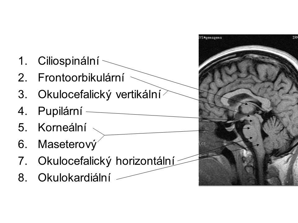 Ciliospinální Algická stimulace v podklíčkové krajině vede k dilataci zornice za 10-30s.