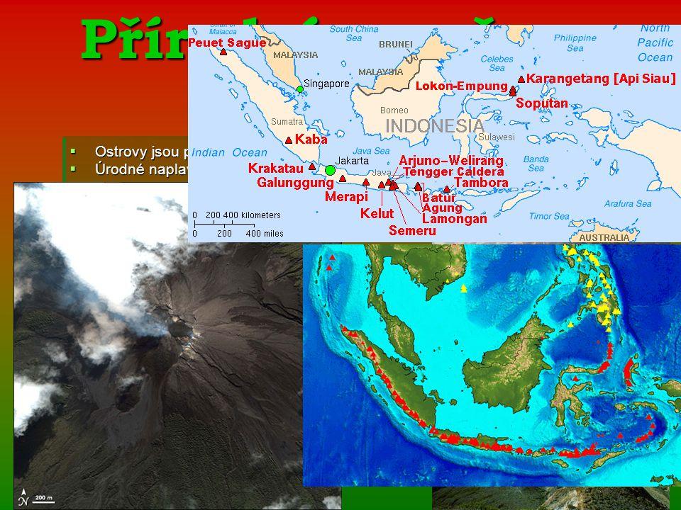 Přírodní poměry a podnebí OOOOstrovy jsou převážně hornaté ÚÚÚÚrodné naplaveninové nížiny a údolí řek NNNNejvětší řeky:Kapuas,Barito a Kutai NNNNejvyšší hora: Puncak Yaya (5 030m) na Nové Guineji NNNNejvětší kráterové jezero: T T T T T oooo bbbb aaaa ----několik stovek sopek a mnohé jsou stále aktivní -součást S S S S S uuuu nnnn dddd ssss kkkk éééé hhhh oooo o o o o bbbb llll oooo uuuu kkkk uuuu t t t t tzv.ohnivého kruhu ----bažiny a neprostupné pralesy TTTTropické monzunové podnebí s malými výkyvy teplot (Průměrná teplota 25-27°C) NNNNa některých horách dokonce sníh VVVVětšina území-2 000 mm srážek NNNNejvíce srážek jihozápadní svahy hor- 4000 až 6000 mm