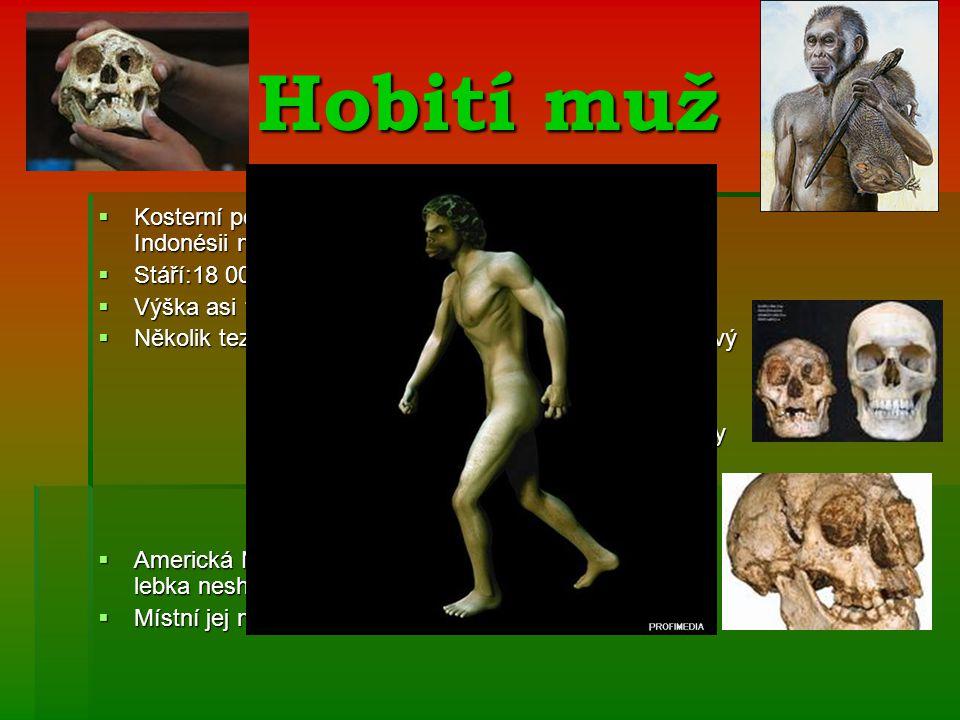 """Hobití muž  Kosterní pozůstatky (ženy) nalezené v roce 2003 v Indonésii na ostrově Flores  Stáří:18 000 let  Výška asi 1 metr => přezdívka """"hobit  Několik tezí:- jedná se o současníka Homo Sapiens,nový název Homo Floresiensis název Homo Floresiensis - osoba se vzácnou chorobou - osoba se vzácnou chorobou mikroencefálií-abnormální zmenšení hlavy mikroencefálií-abnormální zmenšení hlavy - předek pigmejů,domorodých obyvatel - předek pigmejů,domorodých obyvatel nízkého vzrůstu nízkého vzrůstu - zdeformovaný člověk rozumný - zdeformovaný člověk rozumný  Americká Národní Akademie vydala prohlášení,že se lebka neshoduje s lebkami lidí trpících mikroencefálií  Místní jej nazývají """"Ebu Gogo , Australané """"Yowies"""