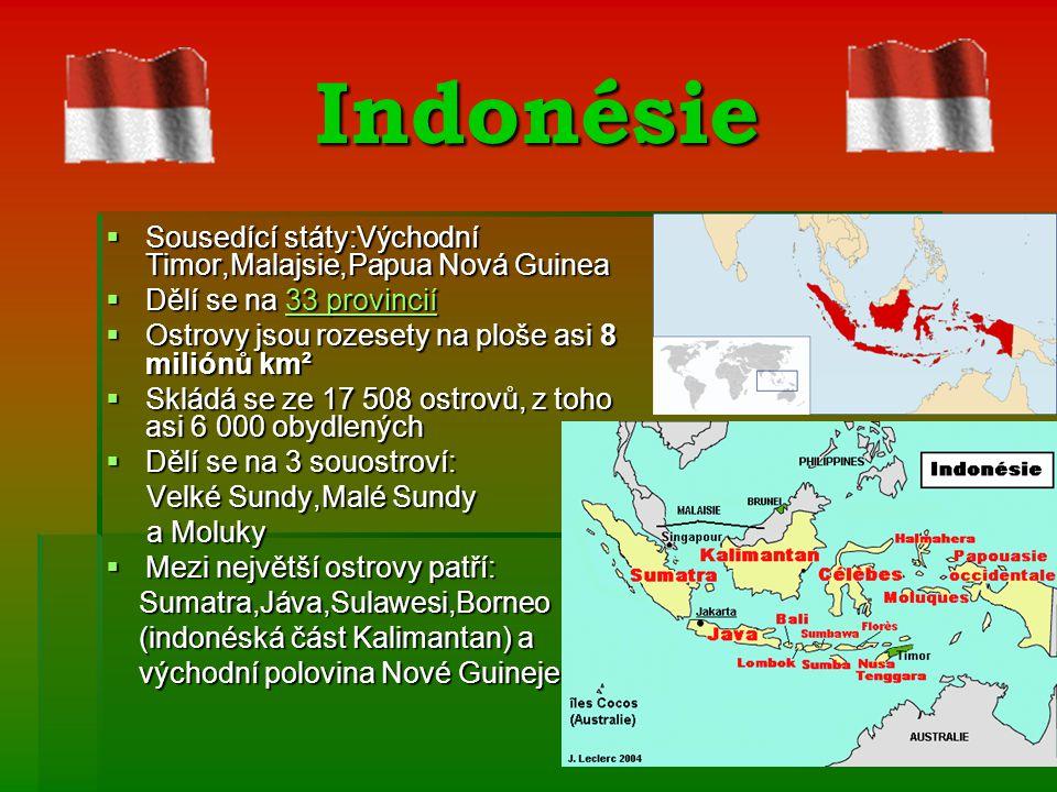 Indonésie SSSSousedící státy:Východní Timor,Malajsie,Papua Nová Guinea DDDDělí se na 3 3 3 3 3 3333 p p p p rrrr oooo vvvv iiii nnnn cccc iiii íííí OOOOstrovy jsou rozesety na ploše asi 8 miliónů km² SSSSkládá se ze 17 508 ostrovů, z toho asi 6 000 obydlených DDDDělí se na 3 souostroví: Velké Sundy,Malé Sundy a Moluky MMMMezi největší ostrovy patří: Sumatra,Jáva,Sulawesi,Borneo (indonéská část Kalimantan) a východní polovina Nové Guineje