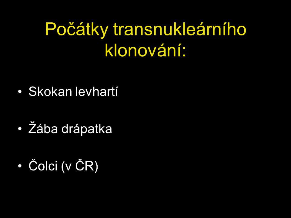 Počátky transnukleárního klonování: Skokan levhartí Žába drápatka Čolci (v ČR)