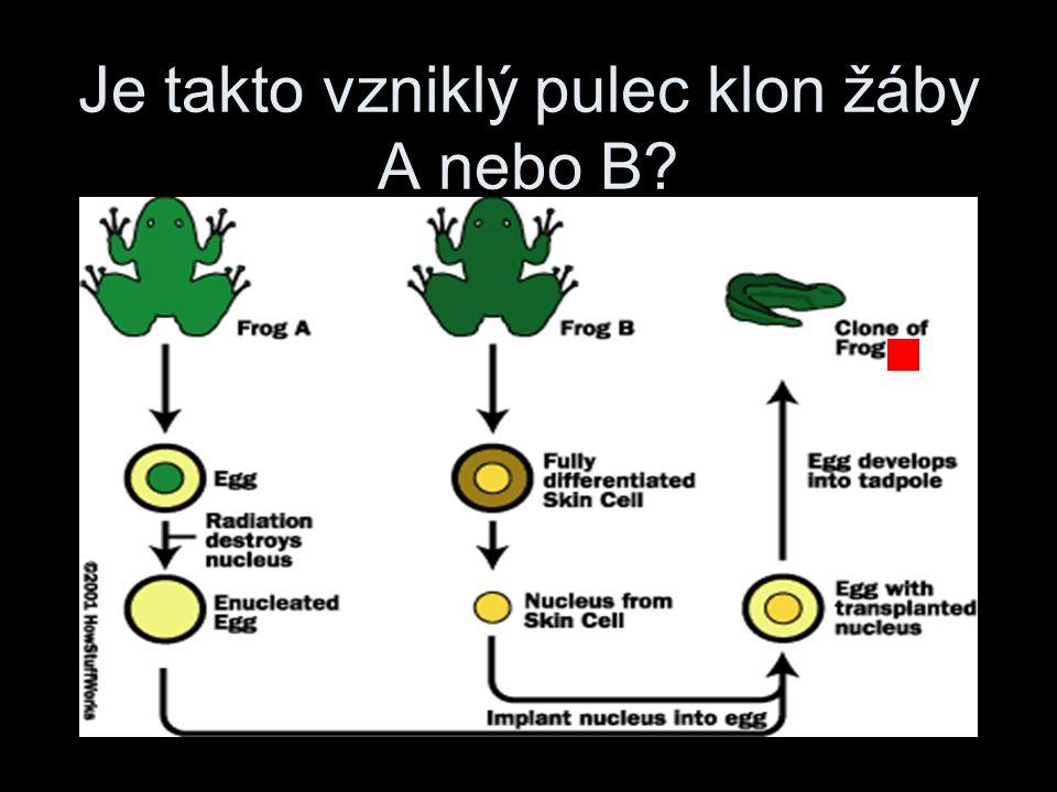 Je takto vzniklý pulec klon žáby A nebo B?