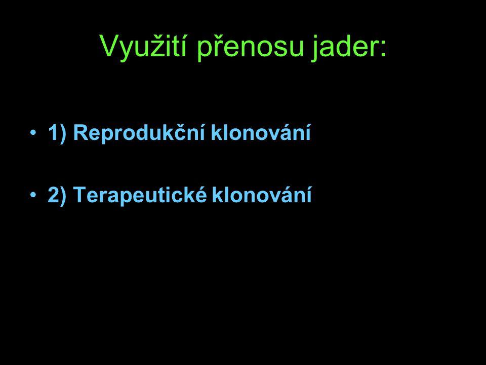 Využití přenosu jader: 1) Reprodukční klonování 2) Terapeutické klonování